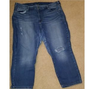 Lane Bryant denim Capri pants